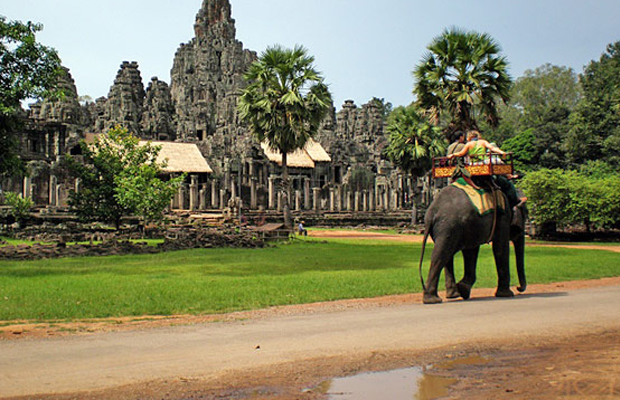 Bakheng Mountain Elephant Rides - Angkor Focus Travel