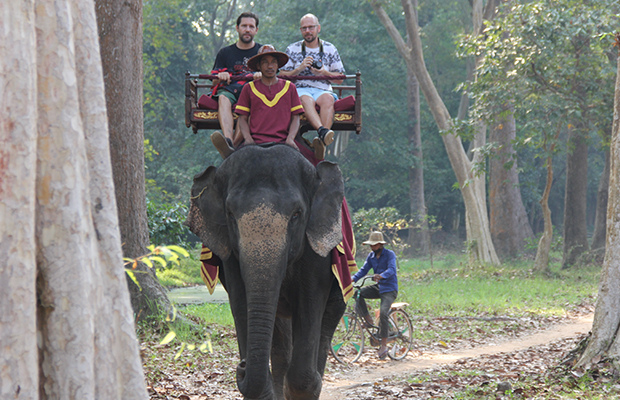 Elephant Rides Services in Angkor Wat - Angkor Focus Travel