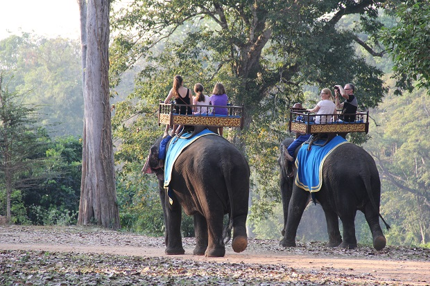 Elephant Rides in Angkor Thom Area - Angkor Focus Travel