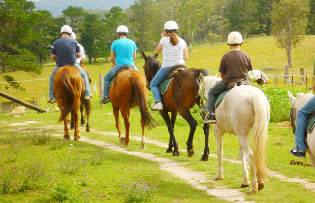The Happy Ranch Horse Farm - Family Trips - Angkor Focus Travel
