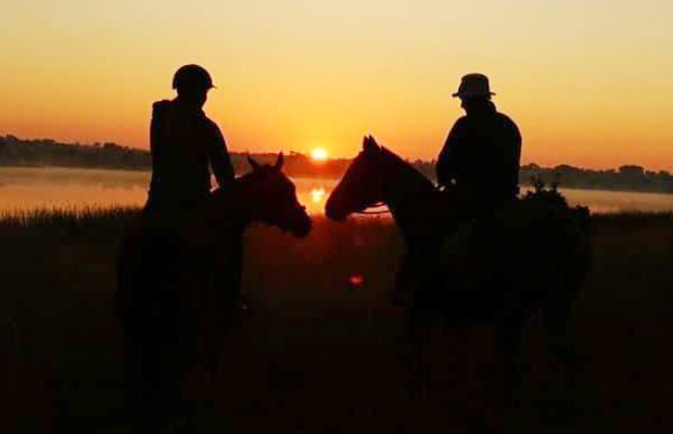 The Happy Ranch Horse Farm - Sunset Tours - Angkor Focus Travel