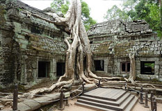 Cambodia Cycling Tour 1 Day