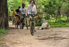 siem_reap_cycling(1).jpg